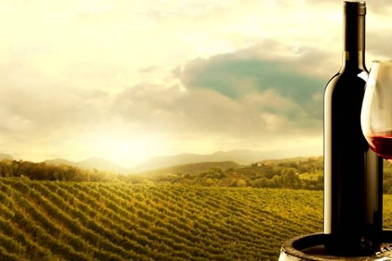 Renowned Critic Presents List Best Argentine Wines